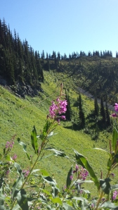 Trail leading to the top of Idaho Peak.