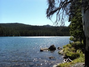 On of my favorite hidden lakes tucked in the Cascade Range. A view from our campsite!