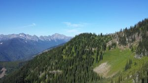 Hike up to the top of Idaho Peak - You can see the trail wind up the ridge through the wildflowers and grass!